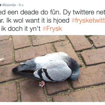 Frysk skriuwe?